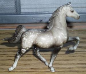 proud arabian horse
