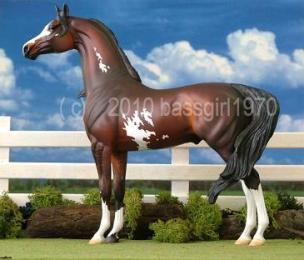 Peter Stone Custom Etched Arabian by Belinda Kranz