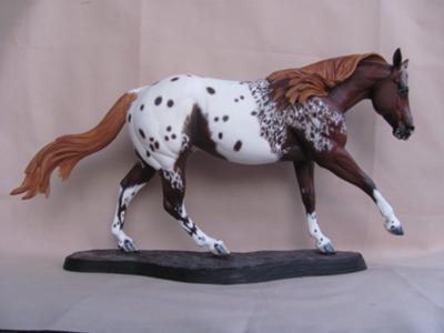 Custom Model - Appaloosa