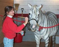 Sue Painting Gracie as a Zebra