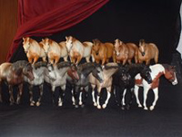 Breyer Indian Pony Congo Line