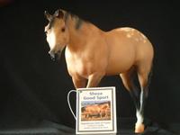 Indian Pony Sheza