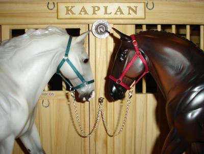 Sample Kaplan halters...