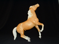 SR Black Horse Ranch Palomino