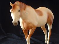 Pinto Indian Pony Matt