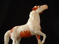 San Domingo Mustang