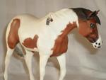 Indian Pony Savannah