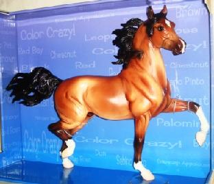 Color Crazy Treasure Hunt 2008 Huckleberry Bey Stallion