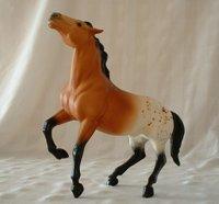 Black Horse Ranch Palomino