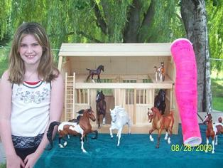 Natalie's Breyer Barn Collection