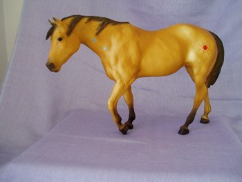 Indian Pony Buckskin