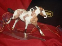 Just About Horses 2007 Prize Scallywag